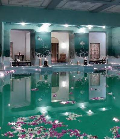 Taj Palace Hotels & Jiva Grande Spas, India