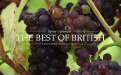 The Best of British: Sparkling Wine at Gusbourne Estate
