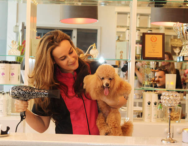Most expensive pets to own in the UK