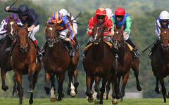 Be first past the post with your own horse at Ascot this June