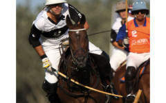 Sex, speed and steeds – why polo is for everyone