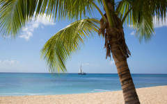 Why not spend Christmas in Barbados?