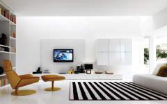 Does money maketh minimalism?