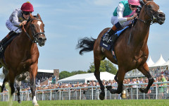 A gallop through Glorious Goodwood