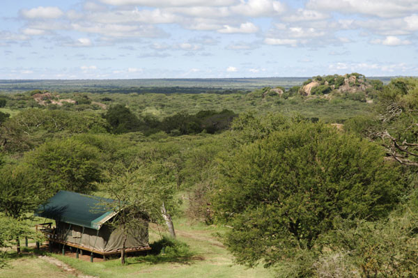 Kusini Camp is the perfect way to soak up the southern Serengeti