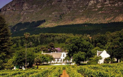 AfrAsia Bank Cape Wine Auction woos collectors, socialites and philanthropists alike