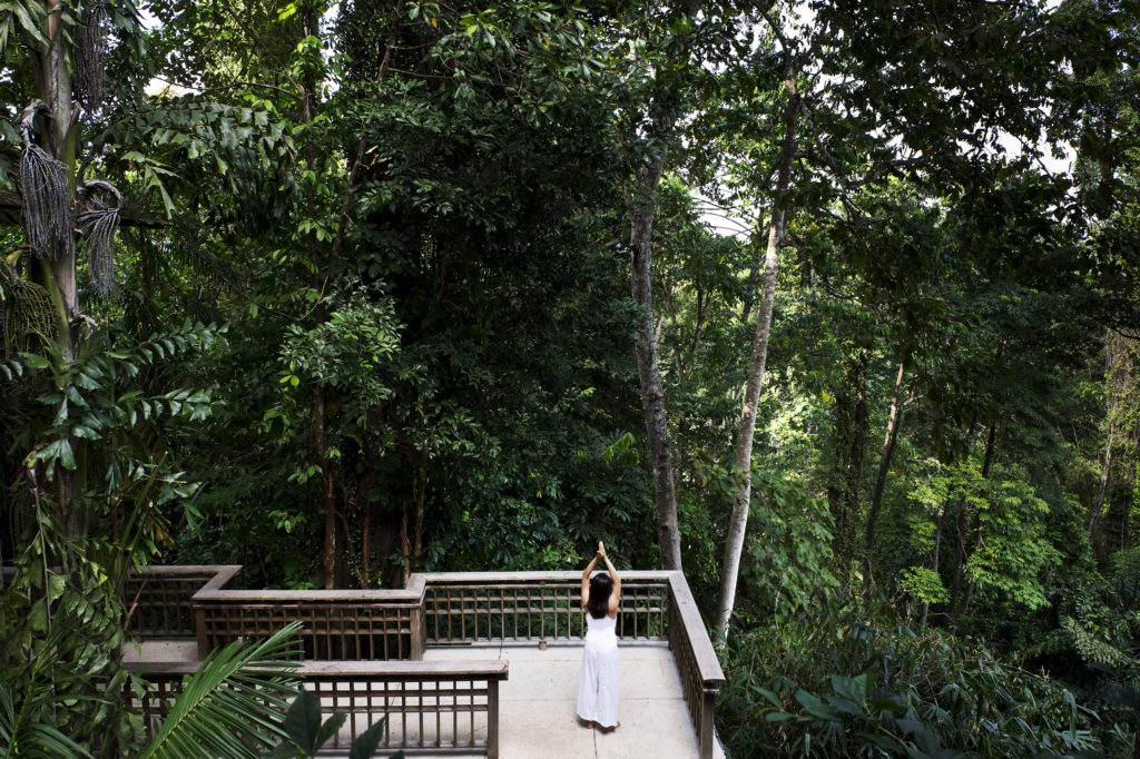 Hi_LW1868_64976109_The_Datai_Langkawi_-_yoga_amids_the_rainforest