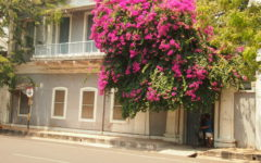 Why Pondicherry's Indo-French charm continues to enchant