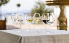 How to select the right wine glass for you