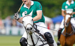 The economics (and madness) of polo
