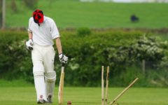 Jason Cowley: Cricket can tell us a lot about decision making in business