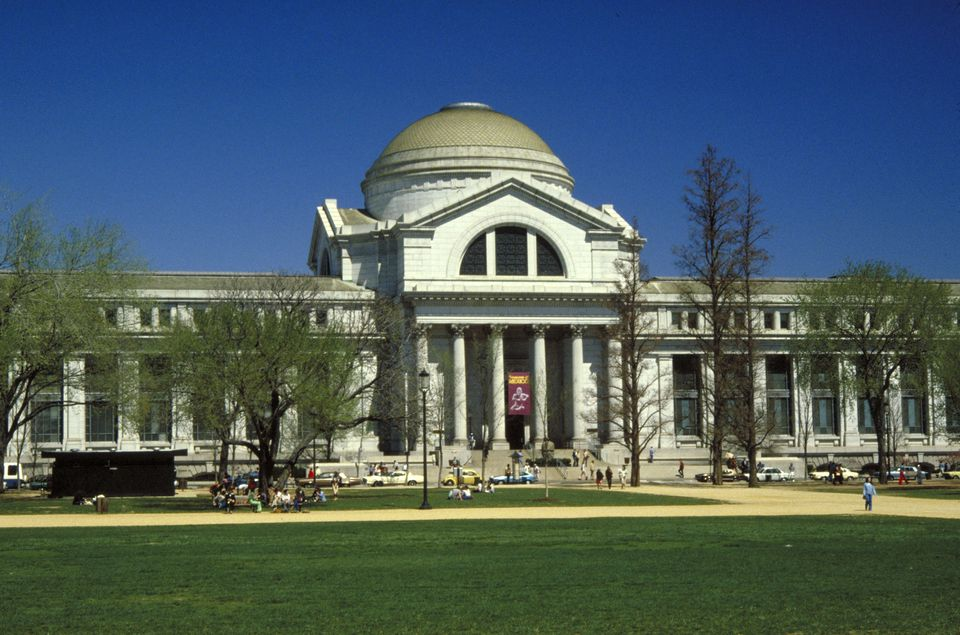 National-Museum-of-Natural-History-Smithsonian-Washington-D.C.