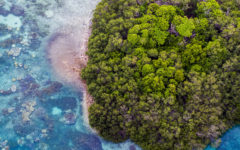 How the Bawah Reserve is leading luxury eco-tourism