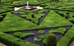How your gardens could provide grounds for lower tax rates