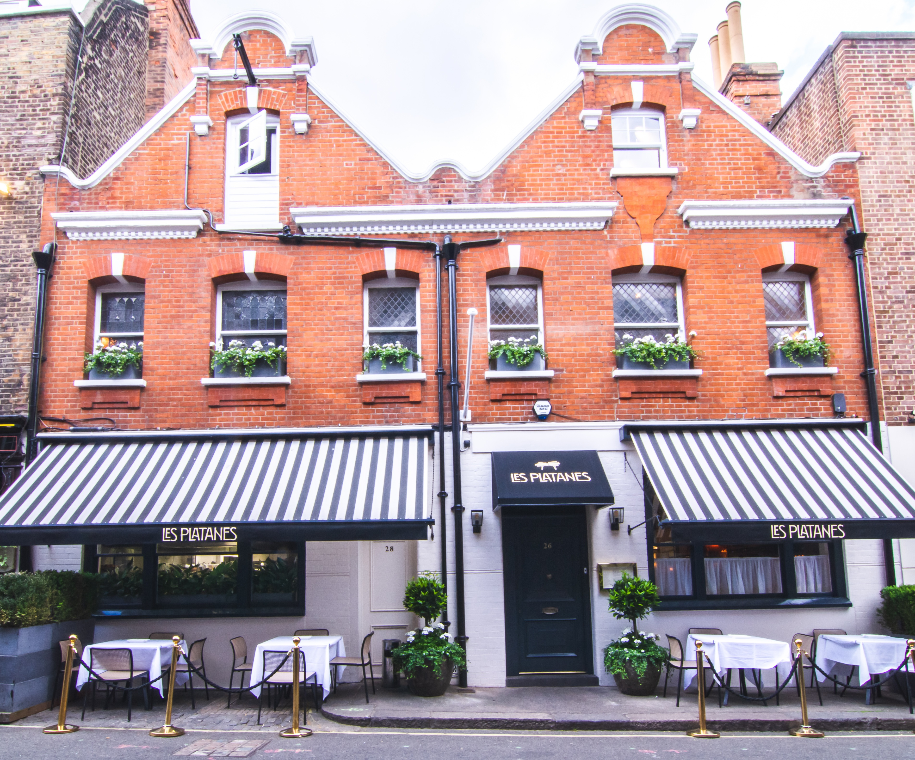 Les Platanes Review A Very Welcome French Bistro In Mayfair