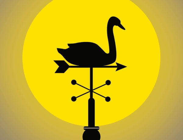 The 'black swan' funds that cleaned up during the coronavirus crisis