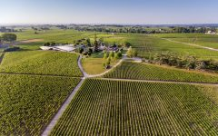 Discover outstanding quality and value in Bordeaux wine