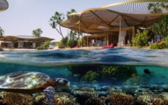 Luxury tourism drives positive change at the Red Sea Project