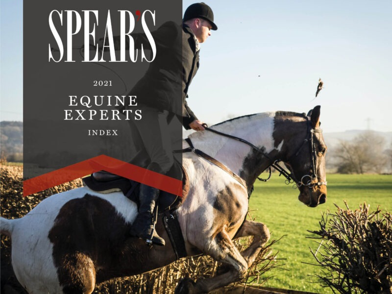 The best equine experts for high-net-worth individuals